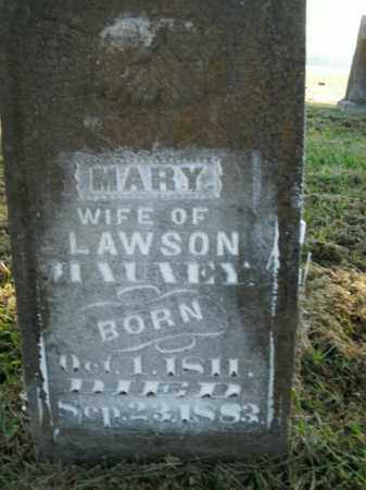 MAUNEY, MARY - Boone County, Arkansas | MARY MAUNEY - Arkansas Gravestone Photos