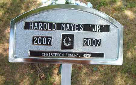 MAYES, JR, HAROLD - Boone County, Arkansas | HAROLD MAYES, JR - Arkansas Gravestone Photos