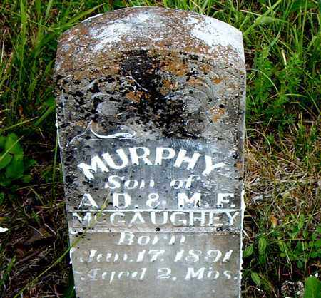 MCGAUGHEY, MURPHY - Boone County, Arkansas | MURPHY MCGAUGHEY - Arkansas Gravestone Photos
