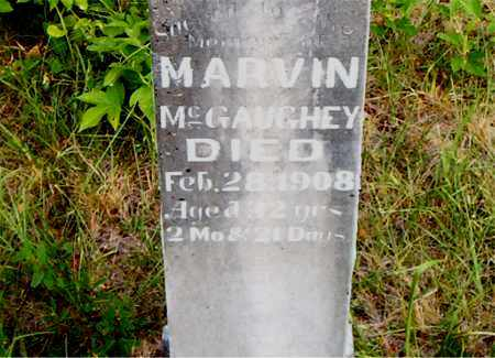 MCGAUGHEY, MARVIN - Boone County, Arkansas | MARVIN MCGAUGHEY - Arkansas Gravestone Photos