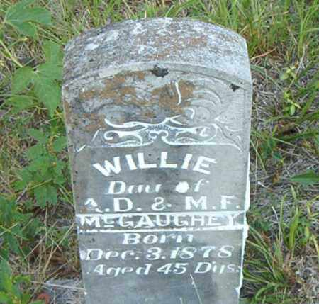 MCGAUGHEY, WILLIE - Boone County, Arkansas | WILLIE MCGAUGHEY - Arkansas Gravestone Photos