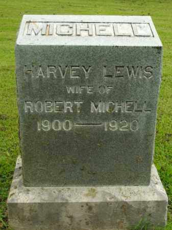 MICHELL, HARVEY - Boone County, Arkansas | HARVEY MICHELL - Arkansas Gravestone Photos