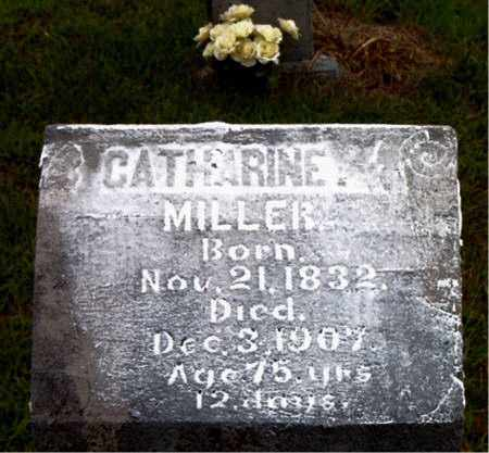 MILLER, CATHERINE - Boone County, Arkansas | CATHERINE MILLER - Arkansas Gravestone Photos