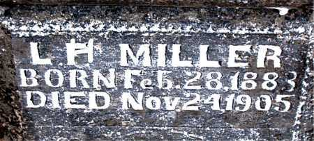 MILLER, LEWIS HENRY - Boone County, Arkansas | LEWIS HENRY MILLER - Arkansas Gravestone Photos