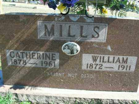 MILLS, WILLIAM - Boone County, Arkansas | WILLIAM MILLS - Arkansas Gravestone Photos