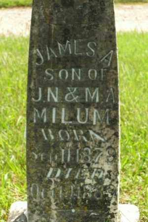 MILUM, JAMES A. - Boone County, Arkansas | JAMES A. MILUM - Arkansas Gravestone Photos