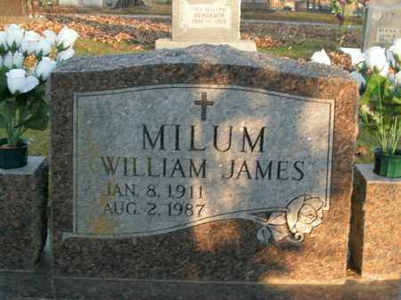 MILUM, WILLIAM JAMES - Boone County, Arkansas | WILLIAM JAMES MILUM - Arkansas Gravestone Photos
