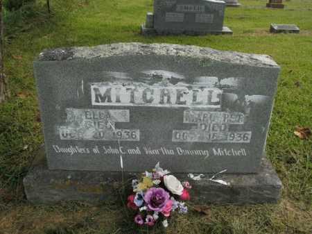 MITCHELL, ELLA - Boone County, Arkansas | ELLA MITCHELL - Arkansas Gravestone Photos