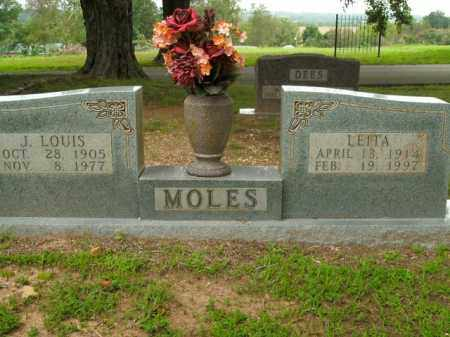MOLES, J. LOUIS - Boone County, Arkansas | J. LOUIS MOLES - Arkansas Gravestone Photos