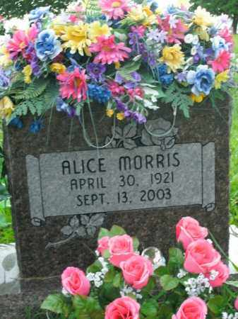 MORRIS, ALICE - Boone County, Arkansas | ALICE MORRIS - Arkansas Gravestone Photos
