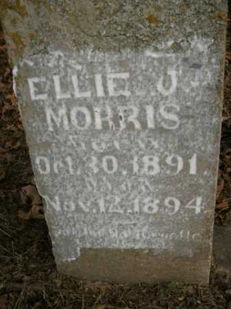 MORRIS, ELLIE J. - Boone County, Arkansas | ELLIE J. MORRIS - Arkansas Gravestone Photos