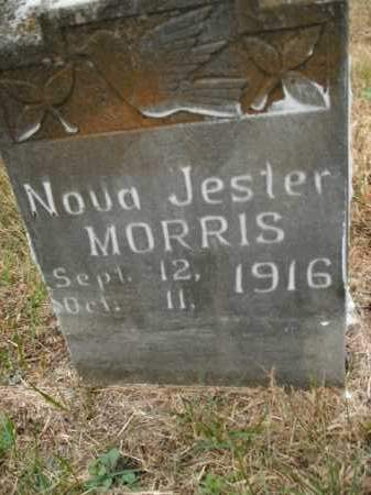 MORRIS, NOVA JESTER - Boone County, Arkansas | NOVA JESTER MORRIS - Arkansas Gravestone Photos