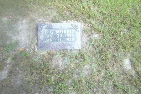 MORRIS, T.G. - Boone County, Arkansas | T.G. MORRIS - Arkansas Gravestone Photos