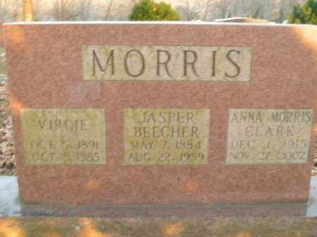 MORRIS, JASPER BEECHER - Boone County, Arkansas | JASPER BEECHER MORRIS - Arkansas Gravestone Photos