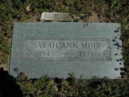 MUIR, SARAH ANN - Boone County, Arkansas | SARAH ANN MUIR - Arkansas Gravestone Photos