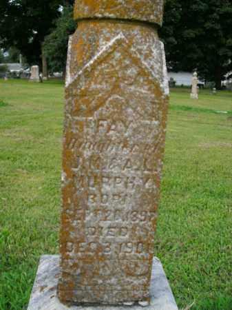 MURPHY, FAY - Boone County, Arkansas | FAY MURPHY - Arkansas Gravestone Photos