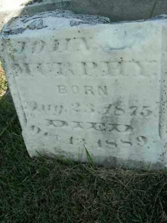 MURPHY, DORA L. - Boone County, Arkansas | DORA L. MURPHY - Arkansas Gravestone Photos