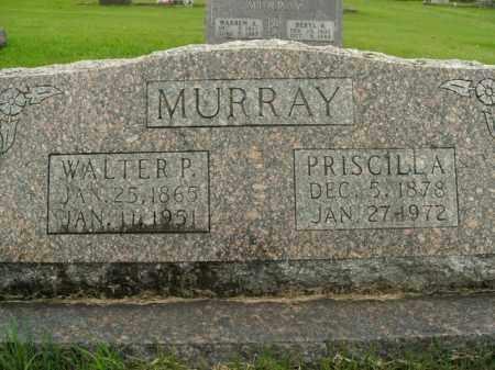 MURRAY, WALTER P. - Boone County, Arkansas | WALTER P. MURRAY - Arkansas Gravestone Photos