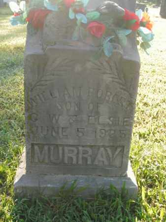 MURRAY, WILLIAM ROBERT - Boone County, Arkansas | WILLIAM ROBERT MURRAY - Arkansas Gravestone Photos