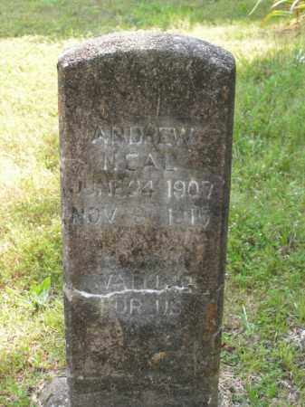 NEAL, ANDREW - Boone County, Arkansas   ANDREW NEAL - Arkansas Gravestone Photos