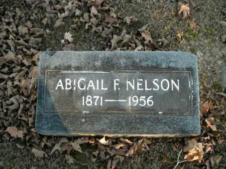 NELSON, ABIGAIL F. - Boone County, Arkansas | ABIGAIL F. NELSON - Arkansas Gravestone Photos