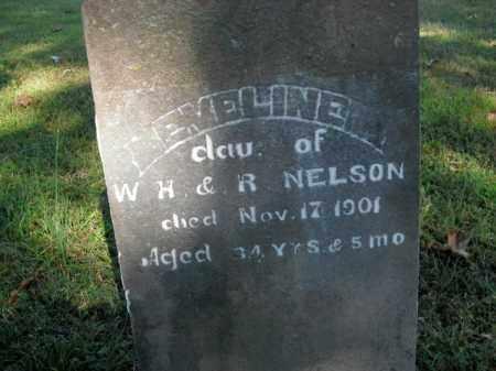NELSON, EMELINE - Boone County, Arkansas | EMELINE NELSON - Arkansas Gravestone Photos