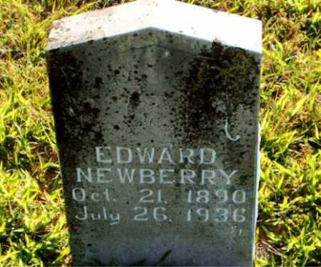 NEWBERRY, EDWARD - Boone County, Arkansas | EDWARD NEWBERRY - Arkansas Gravestone Photos