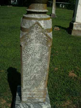 NICHOLSON, JAMES W. - Boone County, Arkansas | JAMES W. NICHOLSON - Arkansas Gravestone Photos