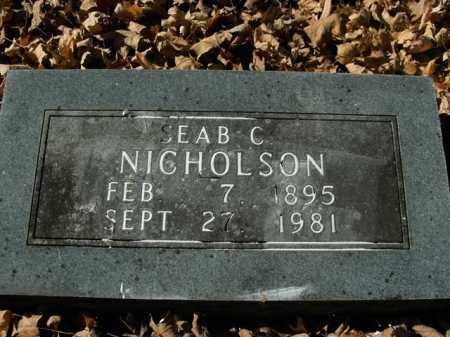 NICHOLSON, SEAB C. - Boone County, Arkansas | SEAB C. NICHOLSON - Arkansas Gravestone Photos