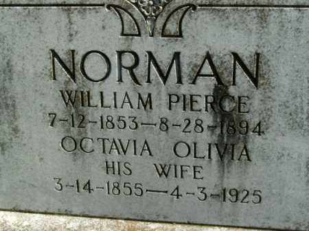 NORMAN, OCTAVIA OLIVIA - Boone County, Arkansas | OCTAVIA OLIVIA NORMAN - Arkansas Gravestone Photos