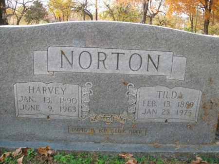 NORTON, HARVEY - Boone County, Arkansas | HARVEY NORTON - Arkansas Gravestone Photos