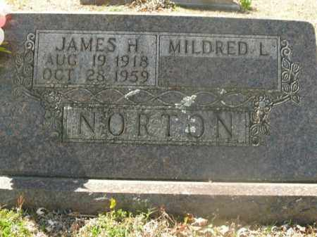 NORTON, JAMES HENRY - Boone County, Arkansas | JAMES HENRY NORTON - Arkansas Gravestone Photos