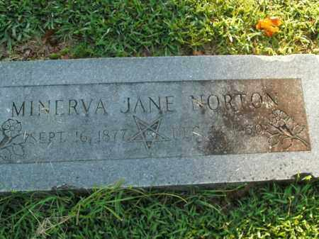 NORTON, MINERVA JANE - Boone County, Arkansas | MINERVA JANE NORTON - Arkansas Gravestone Photos