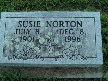 NORTON, SUSIE - Boone County, Arkansas | SUSIE NORTON - Arkansas Gravestone Photos
