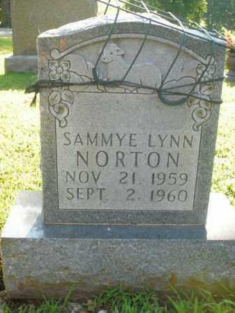 NORTON, SAMMYE LYNN - Boone County, Arkansas | SAMMYE LYNN NORTON - Arkansas Gravestone Photos