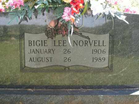 NORVELL, BIGIE LEE - Boone County, Arkansas | BIGIE LEE NORVELL - Arkansas Gravestone Photos