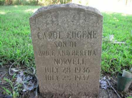 NORVELL, CAROL EUGENE - Boone County, Arkansas | CAROL EUGENE NORVELL - Arkansas Gravestone Photos
