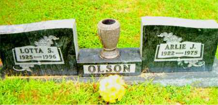 OLSON, LOTTA S. - Boone County, Arkansas | LOTTA S. OLSON - Arkansas Gravestone Photos