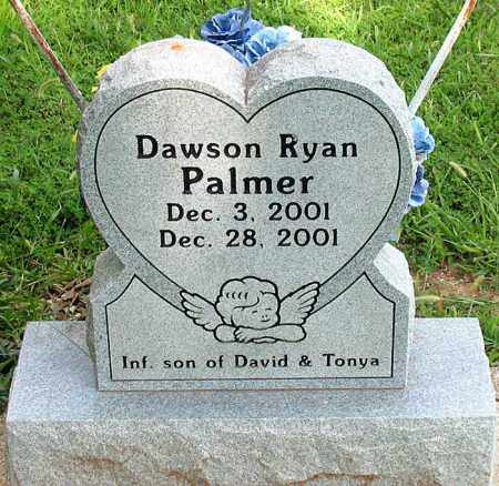 PALMER, DAWSON RYAN - Boone County, Arkansas | DAWSON RYAN PALMER - Arkansas Gravestone Photos
