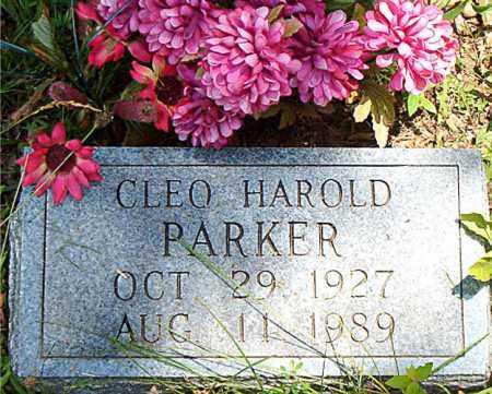 PARKER, CLEO  HAROLD - Boone County, Arkansas | CLEO  HAROLD PARKER - Arkansas Gravestone Photos