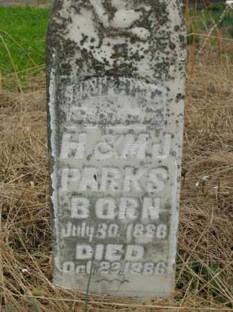PARKS, INFANT - Boone County, Arkansas | INFANT PARKS - Arkansas Gravestone Photos