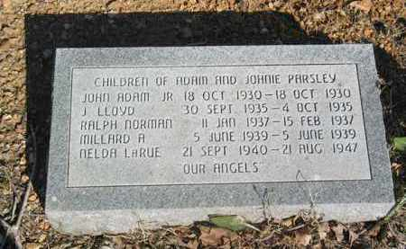 PARSLEY, JOHN ADAM JR - Boone County, Arkansas | JOHN ADAM JR PARSLEY - Arkansas Gravestone Photos