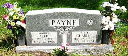 PAYNE, CHARLIE - Boone County, Arkansas | CHARLIE PAYNE - Arkansas Gravestone Photos