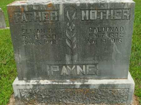 PAYNE, CALDONA D. - Boone County, Arkansas | CALDONA D. PAYNE - Arkansas Gravestone Photos
