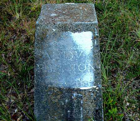 PEARSON, ANDY - Boone County, Arkansas | ANDY PEARSON - Arkansas Gravestone Photos