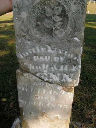 PENN, LAURA - Boone County, Arkansas | LAURA PENN - Arkansas Gravestone Photos
