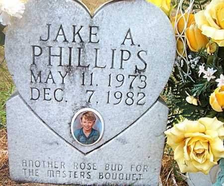 PHILLIPS, JAKE A - Boone County, Arkansas | JAKE A PHILLIPS - Arkansas Gravestone Photos