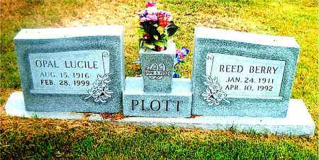 PLOTT, OPAL LUCILE - Boone County, Arkansas | OPAL LUCILE PLOTT - Arkansas Gravestone Photos