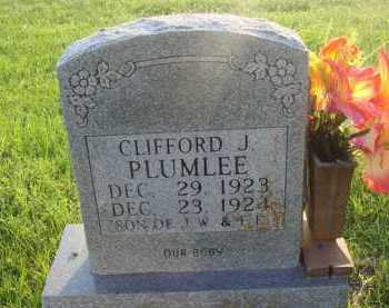 PLUMLEE, CLIFFORD J. - Boone County, Arkansas | CLIFFORD J. PLUMLEE - Arkansas Gravestone Photos