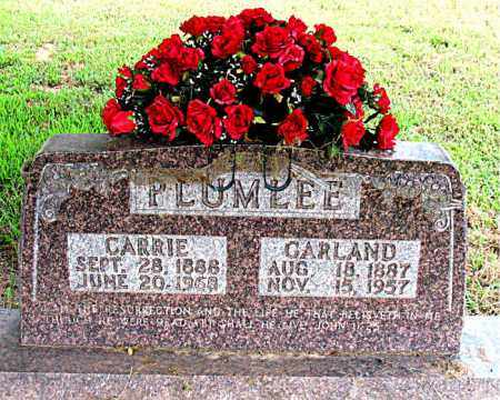 PLUMLEE, CARRIE - Boone County, Arkansas | CARRIE PLUMLEE - Arkansas Gravestone Photos